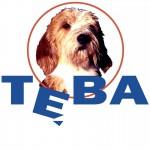 teba_logo